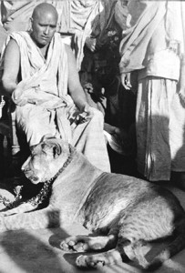 Krishnananda at the 1936 Kumbha Mela, with his tame vegetarian lioness.